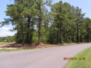 Louisiana Real estate - Property in LEESVILLE,LA